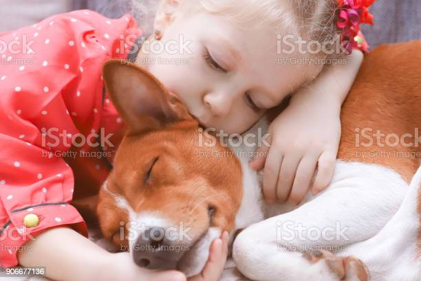 Little blonde curly girl hugging a red basenji dog close up picture id906677136?b=1&k=6&m=906677136&s=612x612&h=oqmbzgi apfyloii6acjf9o9njfq4zw ymenduc2u1y=