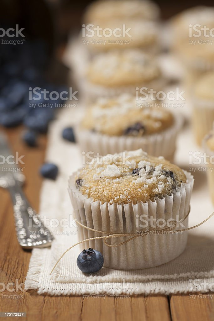 Petite Blueberry Muffins royalty-free stock photo