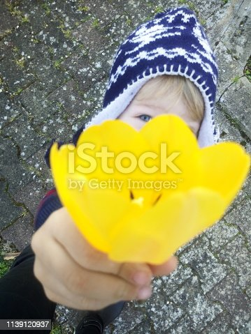 istock Little blue-eyed blond child with hat holding a yellow tulip as a gift 1139120937