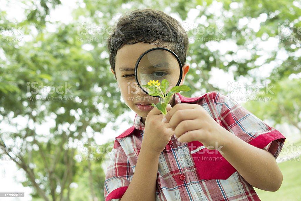 Little botanist royalty-free stock photo