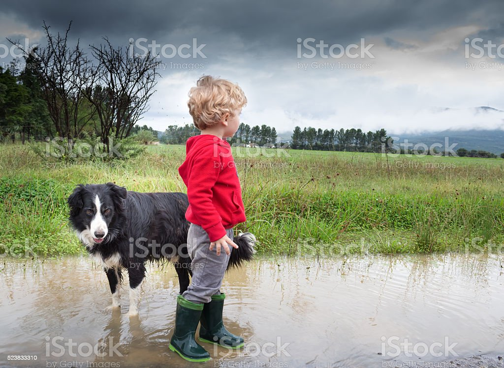 Little boy and dog in puddle stock photo