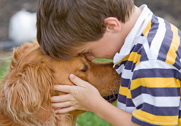 Little Boy and Dog stock photo