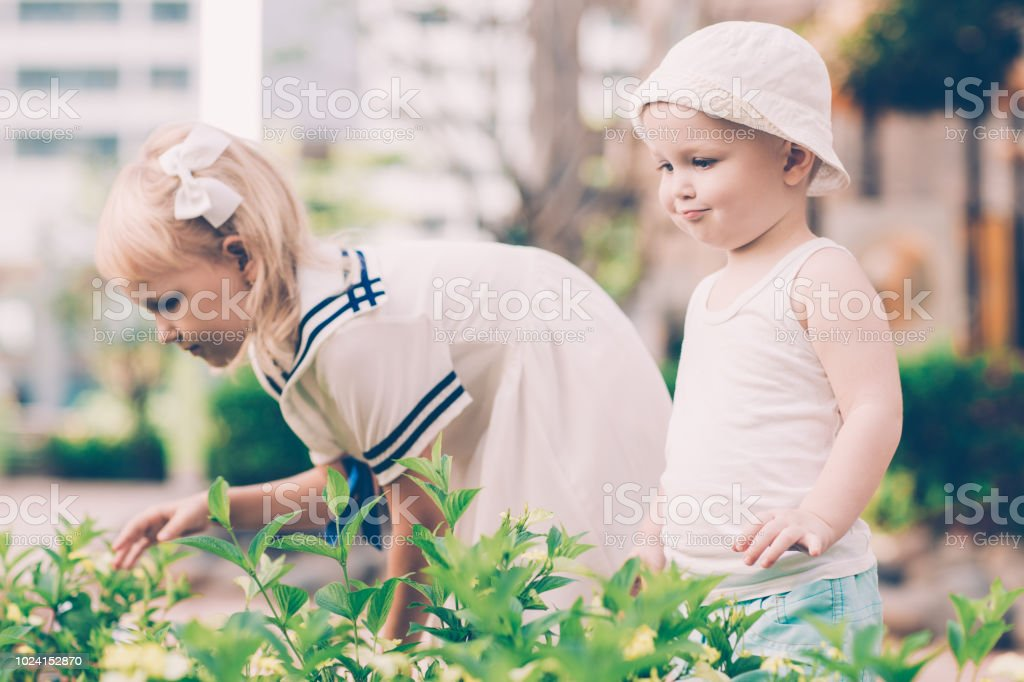 Little Boy and Girl Looking at Plants Outdoors stock photo