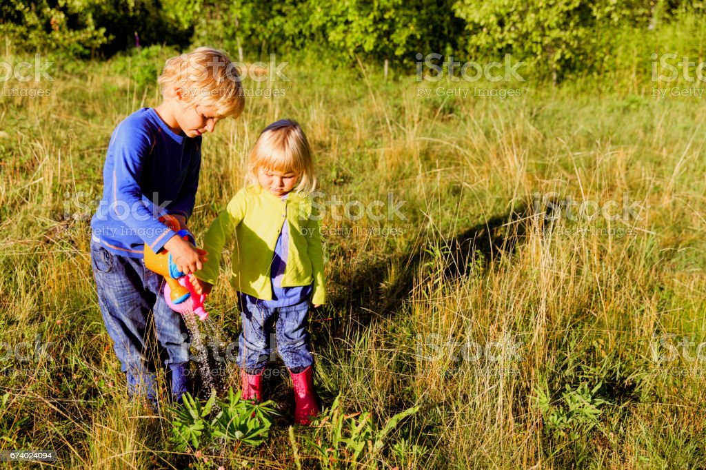 little boy and girl working in the garden royalty-free stock photo