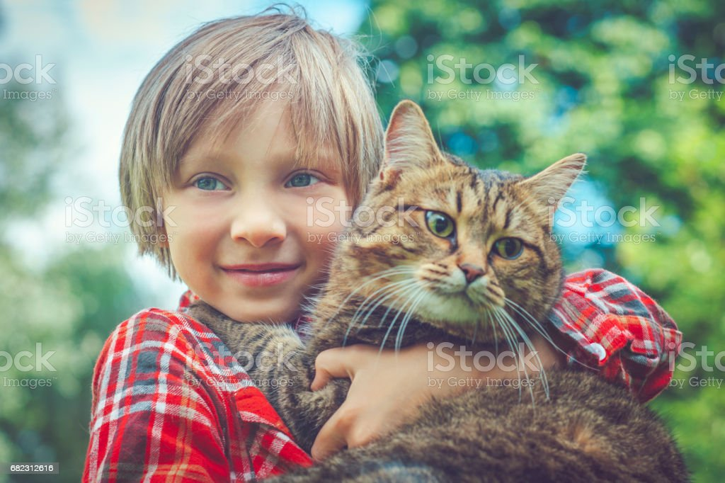 Little boy and his cat stock photo
