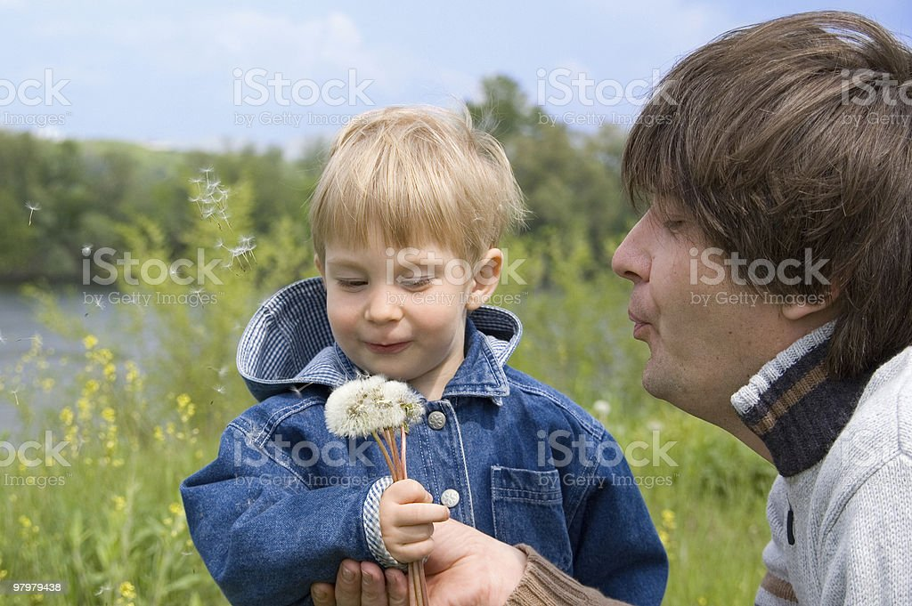 little boy and his father play with dandelions royalty-free stock photo