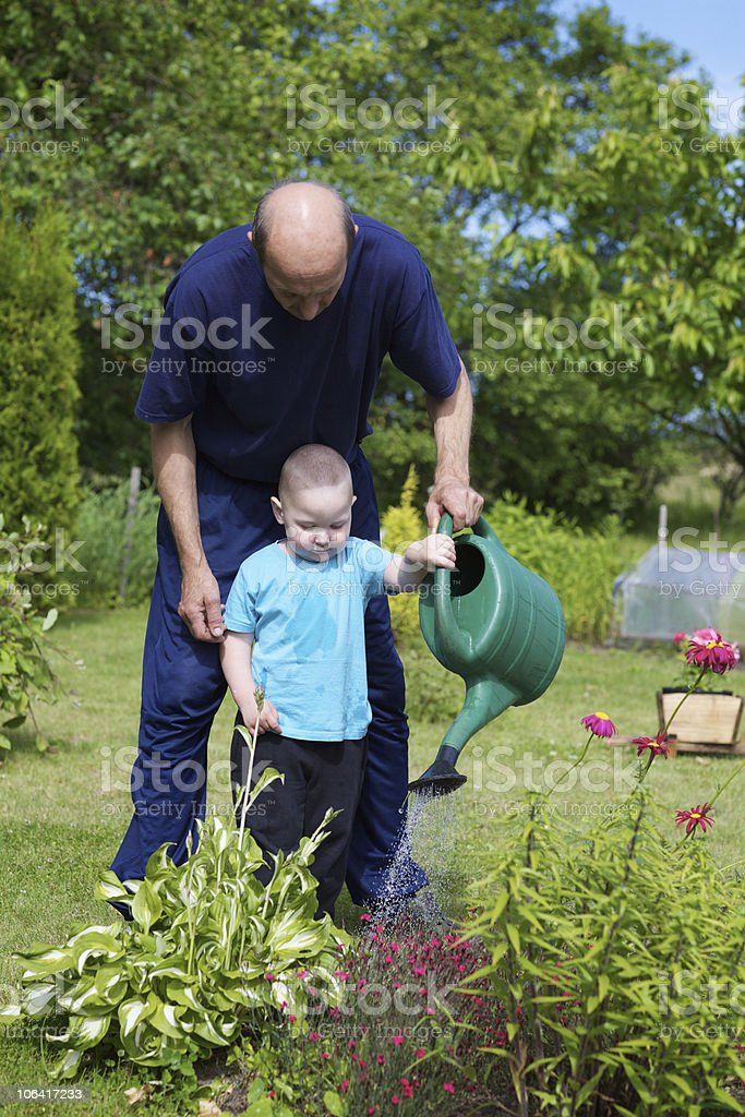 Little boy and his grandfather in the garden stock photo