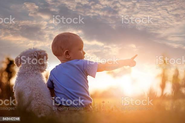 Little boy and his puppy picture id543442248?b=1&k=6&m=543442248&s=612x612&h=4s9frv hovku62ysea5w318jlranx6jo2bdjbr3pevy=