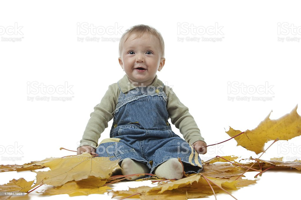 little boy and yellow autumn leaves. royalty-free stock photo