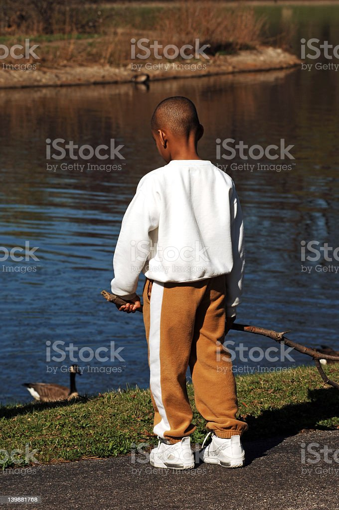 Little Boy at the Duck Pond stock photo