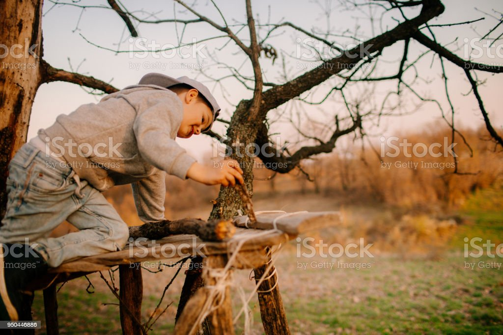 Little Boy Building A Tree House Stock Photo - Download ... on yurt plans free, tree houses for free, furniture plans free, deck plans free, home plans free, cottage plans free, tree houses to live in, houseboat plans free, fire pit plans free, tree stand plans, swings plans free, boat plans free, tree royalty free, tree platform plans, garage plans free, tree business free, build a house for free, wood plans free, box tree stand blueprints free, tree roots outline clip art,