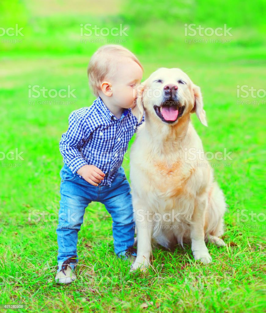 Little boy child is kissing Golden Retriever dog on the grass in the park stock photo
