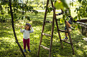 Little boy climbing on ladders for fresh cherries while his sister standing next to ladder