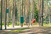 Little boy with climbing gear climbing rope trail between pine trees in an adventure park. Boy enjoys climbing in the ropes course adventure. Rope park.