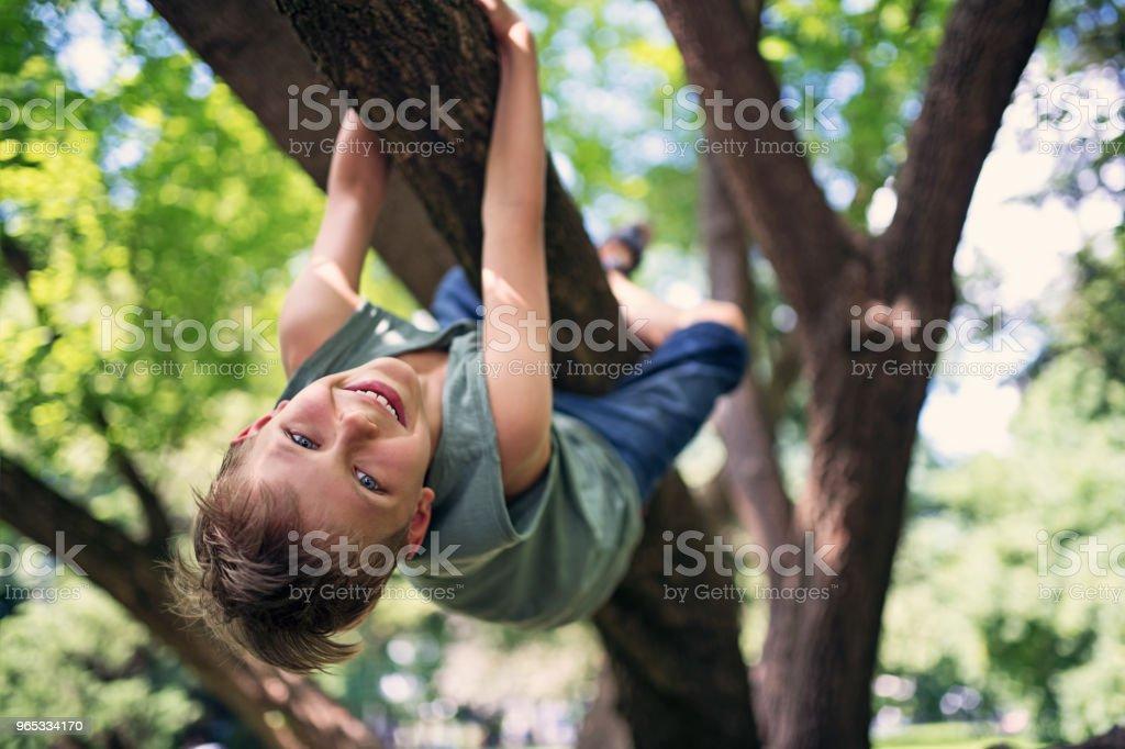 Klettergerüst Um Baum : Klettergerüst günstig kaufen ebay