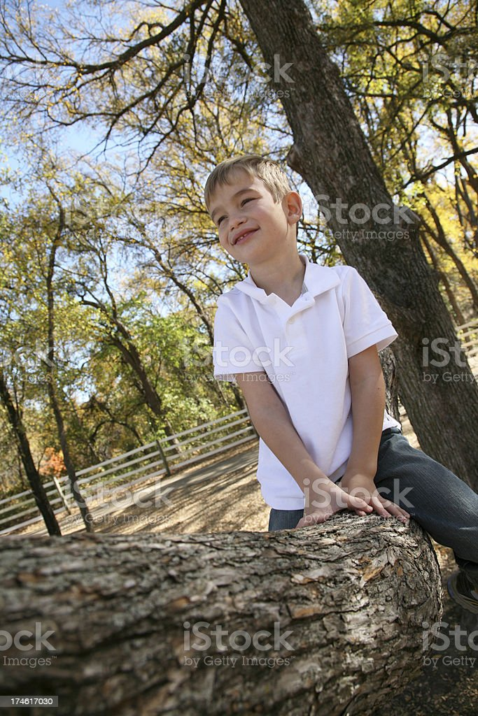 Little Boy Day Dreaming While Sitting In A Tree royalty-free stock photo