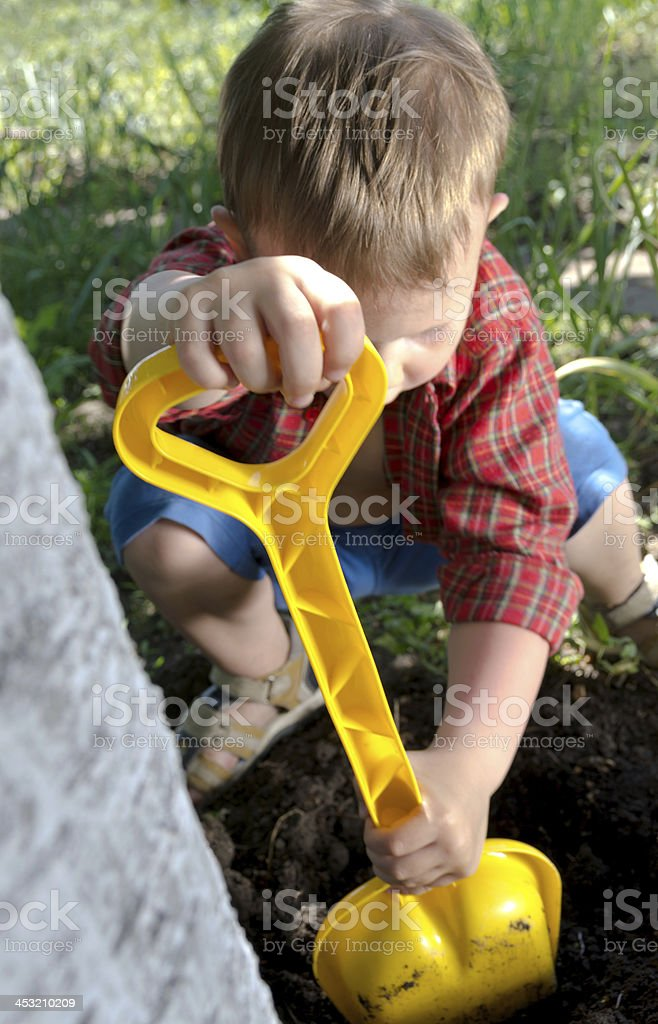 Little boy digging in the garden royalty-free stock photo