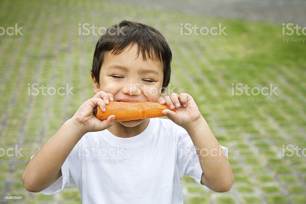 Little boy eating carrot stock photo