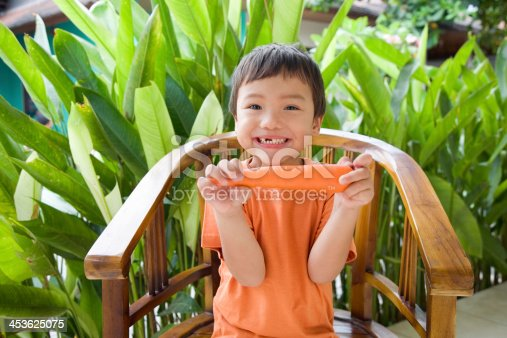 istock Little boy eating carrot 453625075