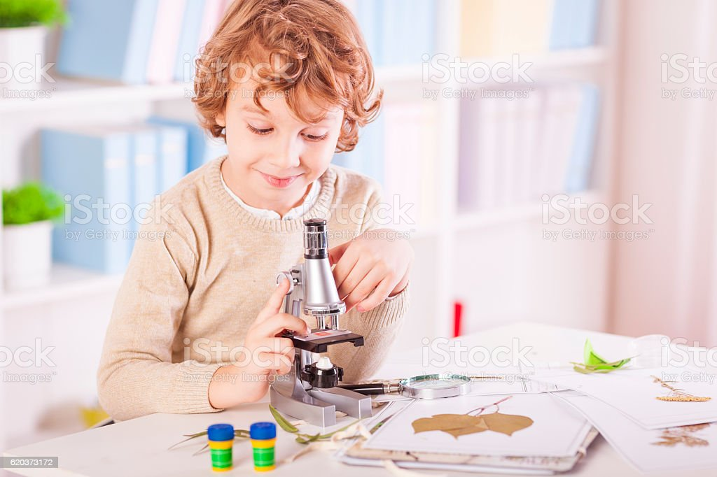 Little boy examing plants specimen with his microscope foto de stock royalty-free