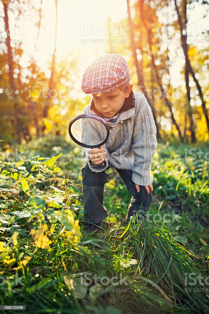Little boy exploring nature in autumn forest stock photo