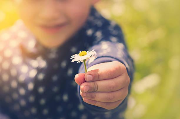 Kleine Jungen erkunden – Foto