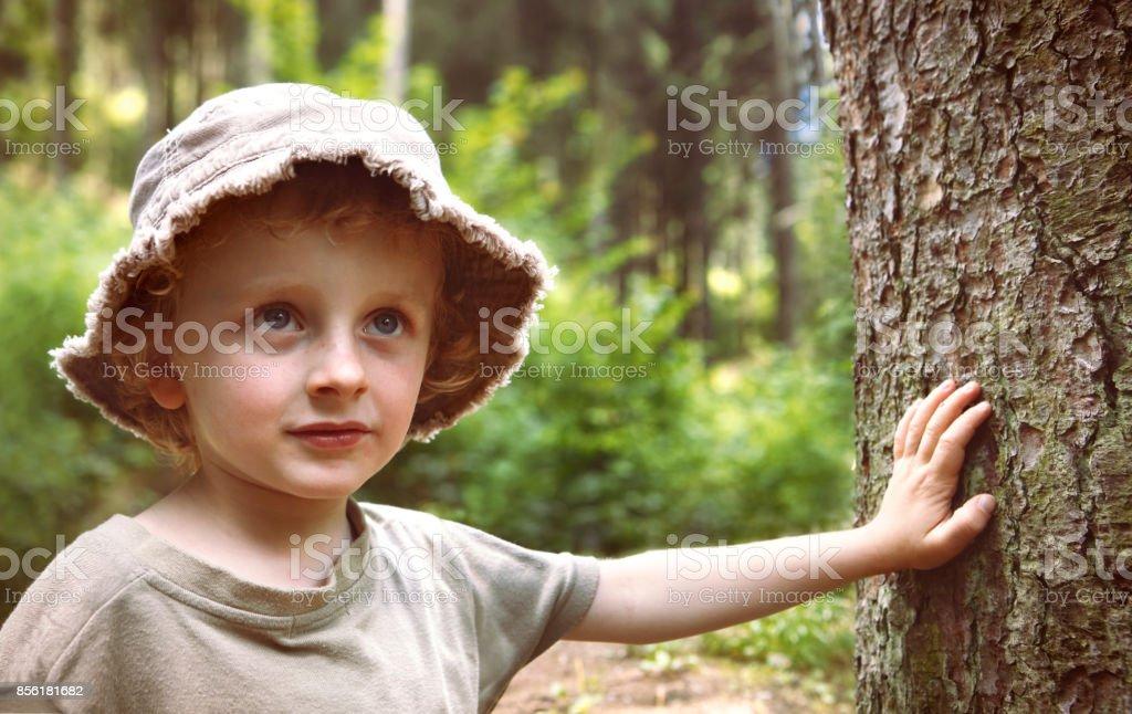 Kleiner Junge erkunden den Wald Lizenzfreies stock-foto