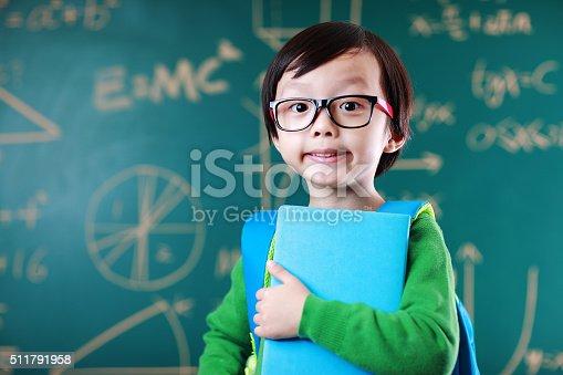 istock Little boy going to school 511791958