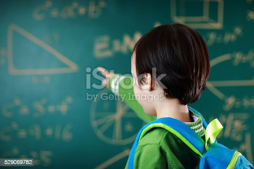 istock Little boy going to school 529069782