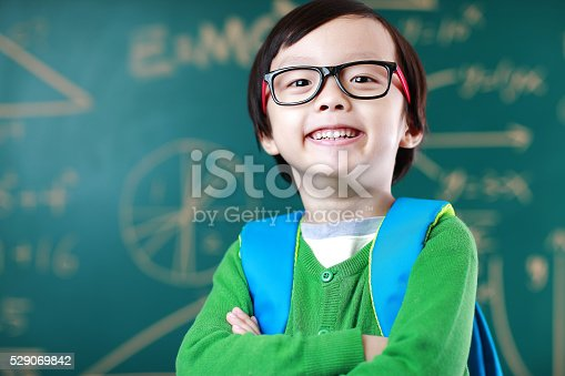 istock Little boy going to school 529069842