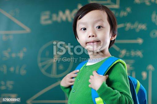 istock Little boy going to school 529069942
