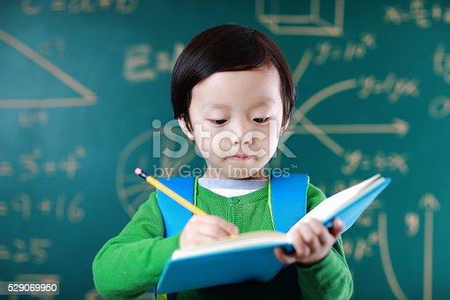 istock Little boy going to school 529069950