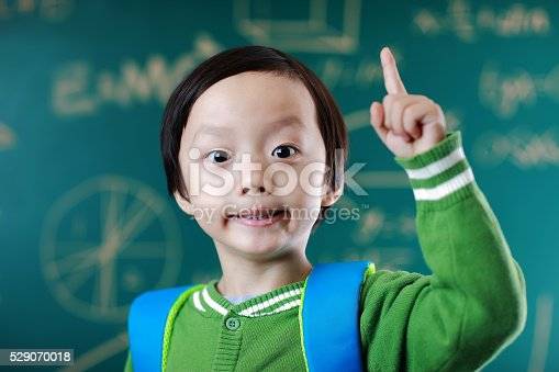 istock Little boy going to school 529070018