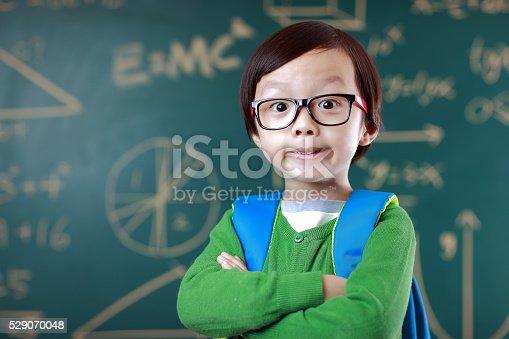 istock Little boy going to school 529070048