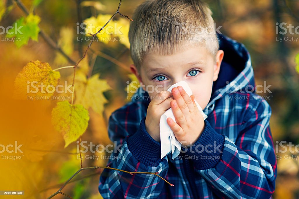 Little boy having autumn cold stock photo