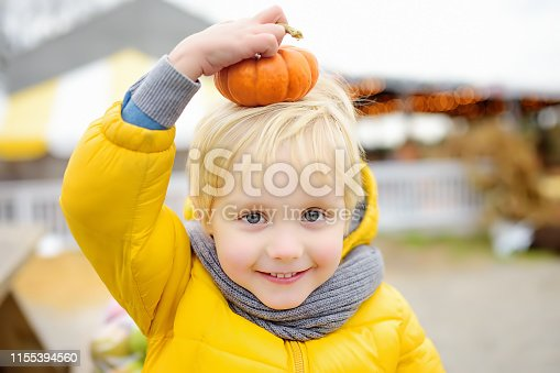 Little boy having fun on a tour of a pumpkin farm at autumn. Pumpkin is traditional vegetable used on American holidays - Halloween and Thanksgiving Day.