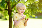 Little boy having fun with apple in domestic garden. Kids game at summer outdoor.