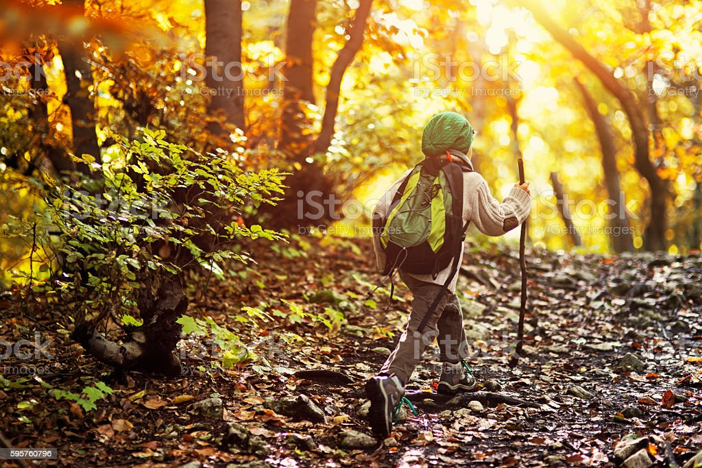 Little boy hiking in an autumn forest stock photo