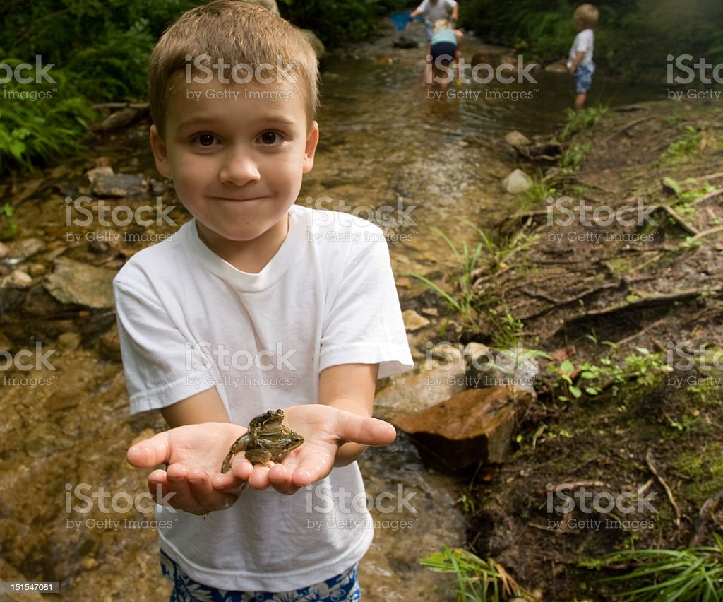 Little boy holding a frog in his hands stock photo