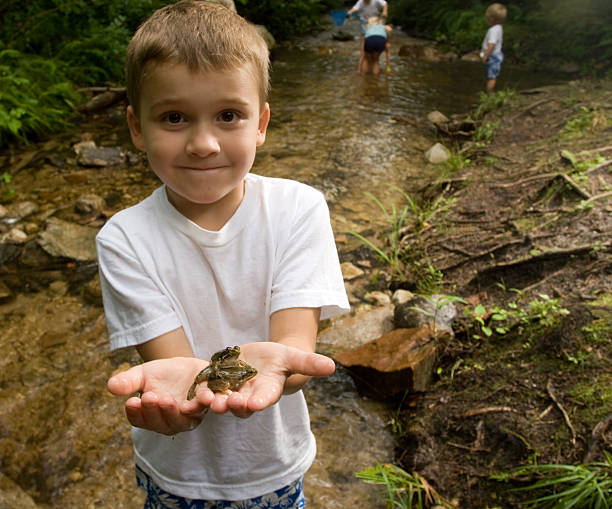 little boy holding a frog in his hands - bos spelen stockfoto's en -beelden