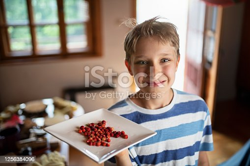 Little boy in lop cabin holding a plate of woodland strawberries freshly picked in forest. The boy is smiling at the camera.
