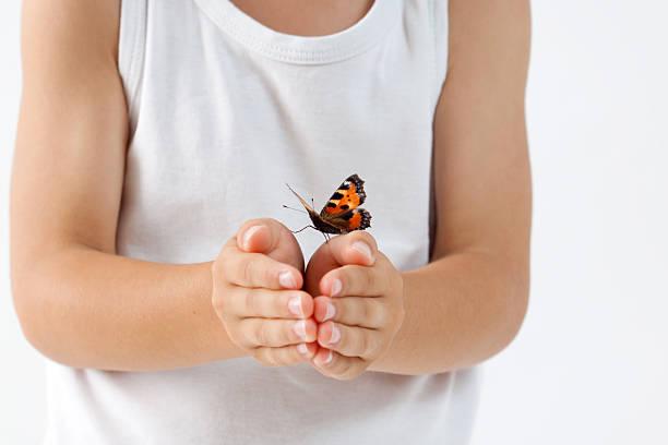 Little boy holding butterfly picture id506332667?b=1&k=6&m=506332667&s=612x612&w=0&h=ojyly8feyldmtgfve7imliyzy4i1pqxk3lzxow2 l2y=