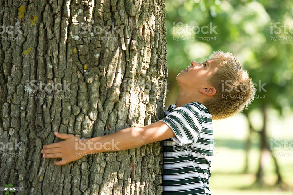 Little Boy Hugging A Tree royalty-free stock photo