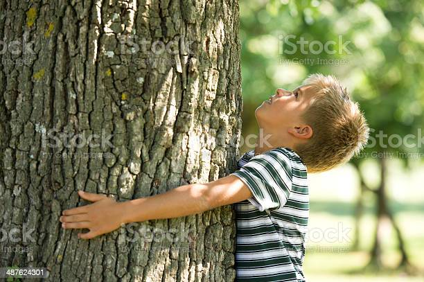 Little Boy Hugging A Tree Stock Photo - Download Image Now