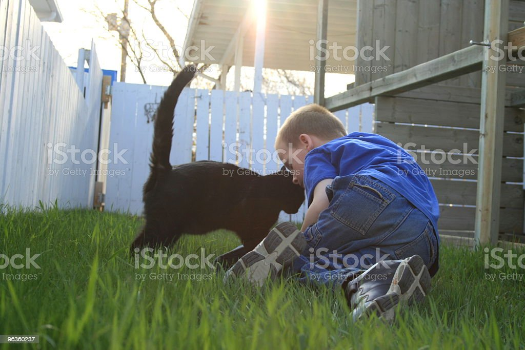 little boy in grass playing with black cat royalty-free stock photo