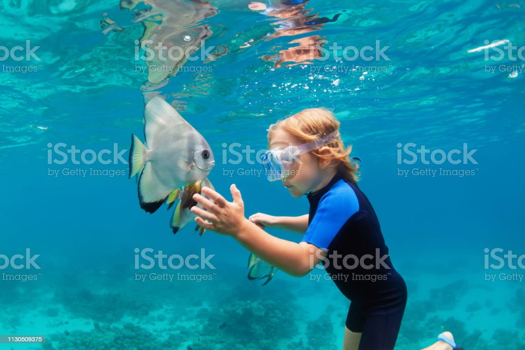 Little boy in snorkeling mask dive underwater with tropical fishes royalty-free stock photo