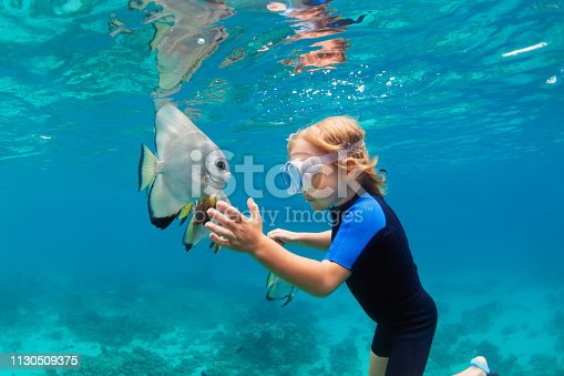 831127716 istock photo Little boy in snorkeling mask dive underwater with tropical fishes 1130509375
