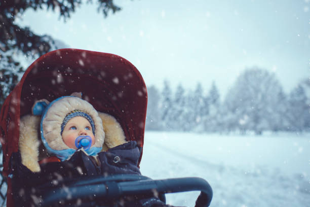 Little boy in stroller in winter park Child in forest under snow baby carriage stock pictures, royalty-free photos & images