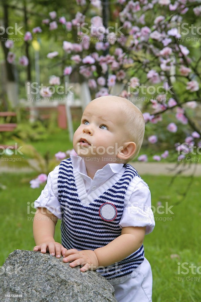 little boy in the park royalty-free stock photo