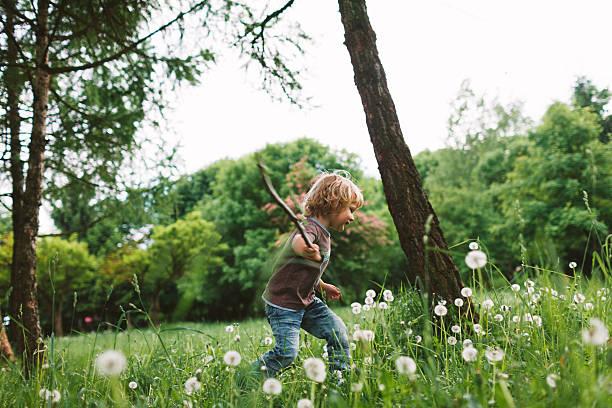 little boy in the park - bos spelen stockfoto's en -beelden